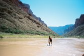 Grand Canyon, late summer, 2004 A seven-day adventure down the Colorado River that triggered Hamilton's continued interest in river hydrolics and tidal bore sup surfing