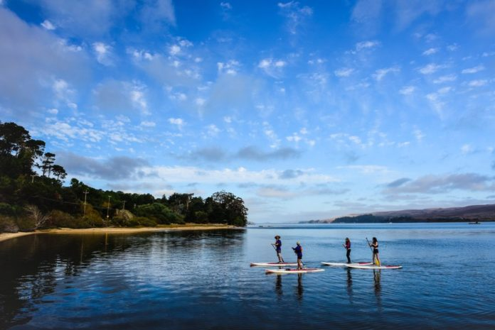 Tomales Bay Glenn Dubock stand up paddle