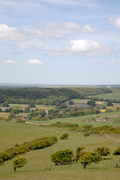 southdownsway-2