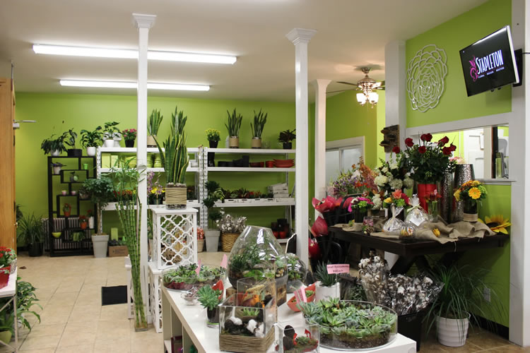 South Boston Flower Shop  Boston Florist  Stapleton Floral Design