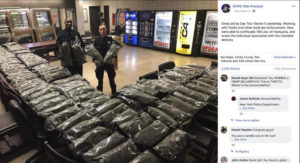 NEW YORK POLICE DEPARTMENT VIA AP                                 In this undated photo taken from the New York Police Department Facebook page, officers stand by what NYPD thought was marijuana when they confiscated in the Brooklyn borough of New York at the 75th Precinct of the NYPD in New York. The Vermont farm that grew the plants and the Brooklyn CBD shop that ordered them insist they're not pot, but legal industrial hemp.