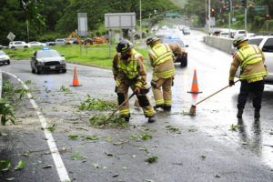 BRUCE ASATO / BASATO@STARADVERTISER.COM                                 Honolulu firefighters cleared the road at the on-ramp to the Pali Highway near the intersection of Kamehameha Highway after tree branches fell today.