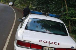 CTY HELICOPTER - The Princeville Airport was closed and secured for FAA investigation after the fatal crash on Thursday afternoon which claimed four lives and left three critically injured. The Kauai Police Department kept guard near the crash site along Highway 56. Honolulu Star-Bulletin Photo by Cindy Ellen Russell, March 9, 2007