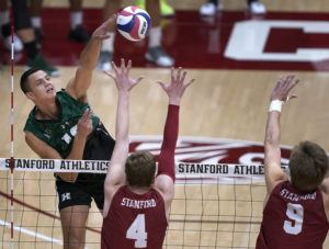 TONY AVELAR/ SPECIAL TO THE STAR-ADVERTISER                                 Rado Parapunov hits against Stanford during tonight's match.