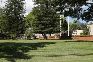 JAMM AQUINO/JAQUINO@STARADVERTISER.COM                                 The University of Hawaii at Manoa campus is seen in February.
