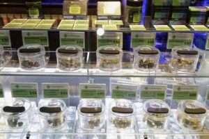 ASSOCIATED PRESS                                 Various marijuana buds for sale are displayed at The Green Cross cannabis dispensary in San Francisco.