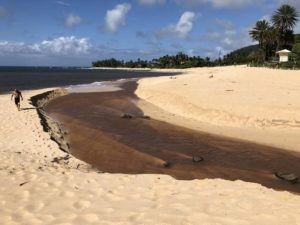 GEORGE F. LEE / GLEE@STARADVERTISER.COM                                 Brown water runoff at Sunset Beach on the north shore of Oahu on March 28.