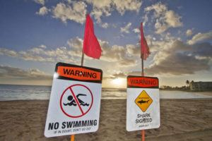 STAR-ADVERTISER / 2015                                 Warning signs were posted at Makaha Beach after a shark attack.