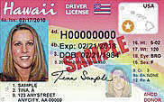 COURTESY HAWAII DEPARTMENT OF TRANSPORTATION                                 Sample driver's license with the star in the gold circle for people over 21 years of age.