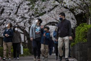 ASSOCIATED PRESS                                 People wearing protective masks to help curb the spread of the coronavirus walk under a canopy of cherry blossoms Sunday in Tokyo.