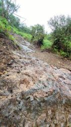 COURTESY DLNR                                 The Poamoho Trail has been closed due to a large landslide event.