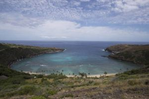 CINDY ELLEN RUSSELL / CRUSSELL@STARADVERTISER.COM                                 City officials announced today the launch of a online reservation system for Hanauma Bay to the public, with the first slots available starting Wednesday.