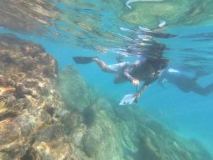 COURTESY DEPARTMENT OF LAND AND NATURAL RESOURCES                                 Biologists watch coral spawn at Waialea Bay.