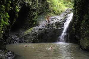 STAR-ADVERTISER / 2014                                 A hiker jumps off the rocks into the pond at Maunawili Falls.
