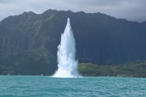 COURTESY DLNR                                 Photo courtesy Department of Land and Natural Resources The U.S. Navy detonated an unexploded ordnance at Kaneohe Bay