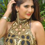 Neha Saxena Wiki, Age, Height, Weight, Biography, Family, Affairs, Husband