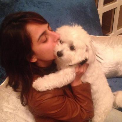 Kashmira Irani loves dogs