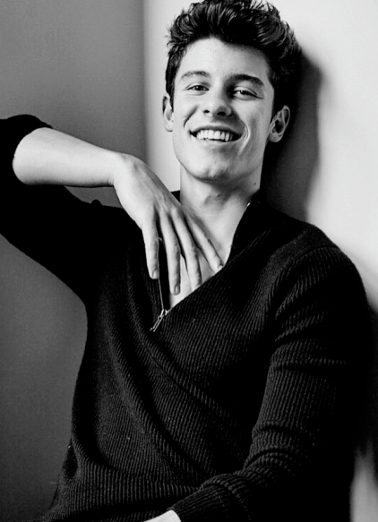 Shawn Mendes Biography Net Worth Height Weight Age Size Music