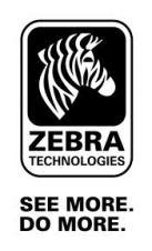 Zebra_see_more_do_more