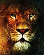 Leul ramane la 3,5 pana la sfarsitul anului...