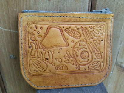 Plant cell leather coin purse
