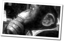 Dr. Archibald Monroe aka The Incredible Speaking Ape!