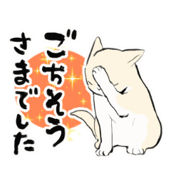 動くねこ(敬語・丁寧語集) | LINEスタンプ | たろ