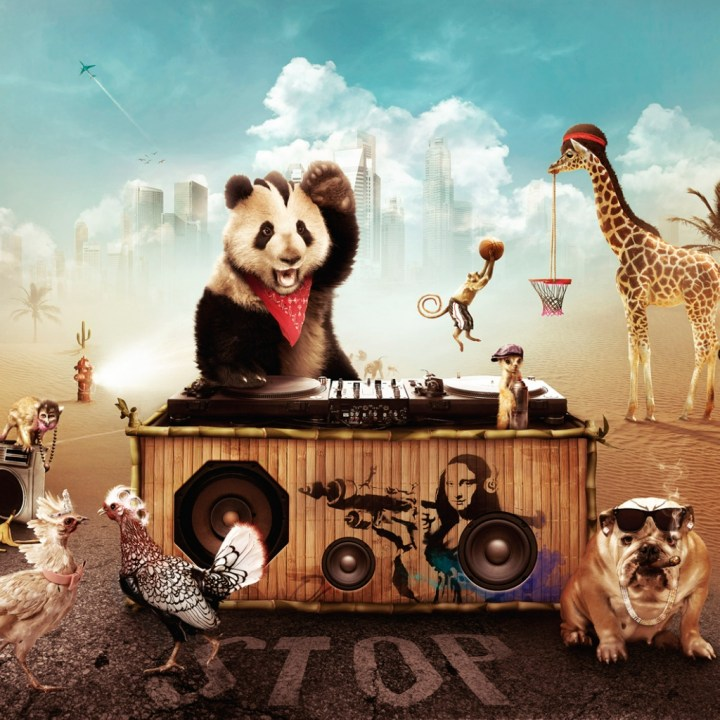 animal.party