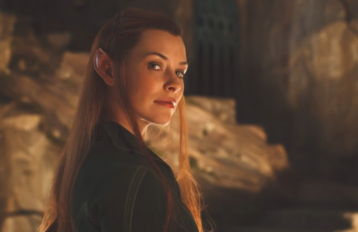 Perhaps another sexy elf...?
