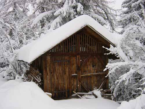 Shack in the snow