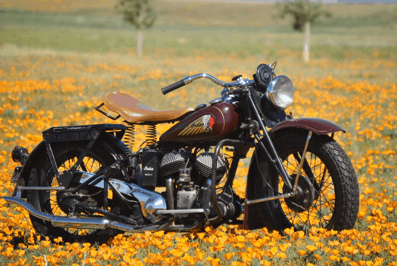 1940 indian sport scout for sale - starklite indian motorcycles