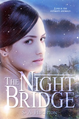 The Night Bridge