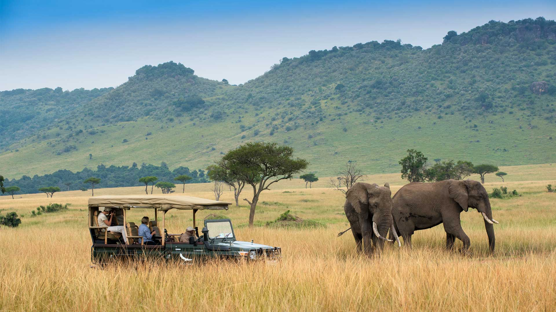 Seeing elephants on a game drive in Masai Mara
