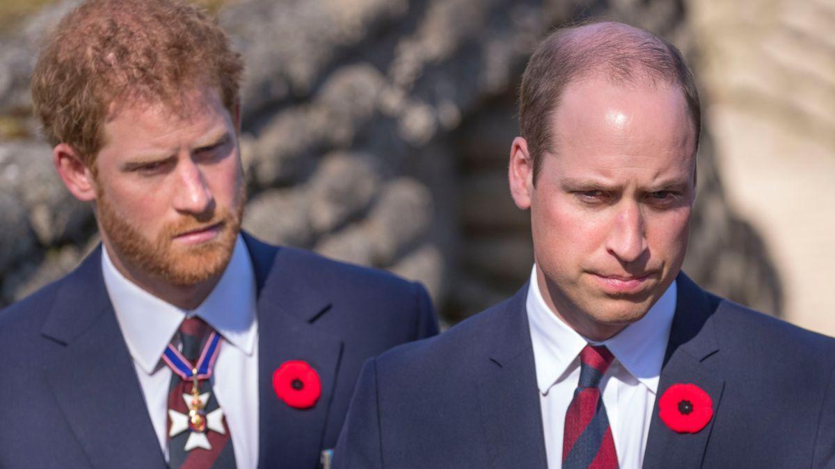 Le prince William : son initiative qui a rendu furieux son frère le prince Harry