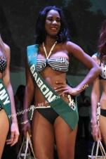 Miss Earth 2014 (69)
