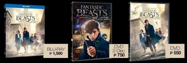 Fantastic Beasts Packshots