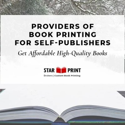 A Book Business for Publishing Success