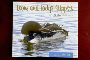 Loons and Lady Slippers of Itasca State Park in Northern Minnesota, a photography book by Dana Holm.