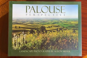 Palouse Perspective by Alison Meyer