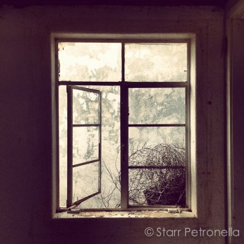 fine_art_photography_atlanta_ga_starrpetronella-3122