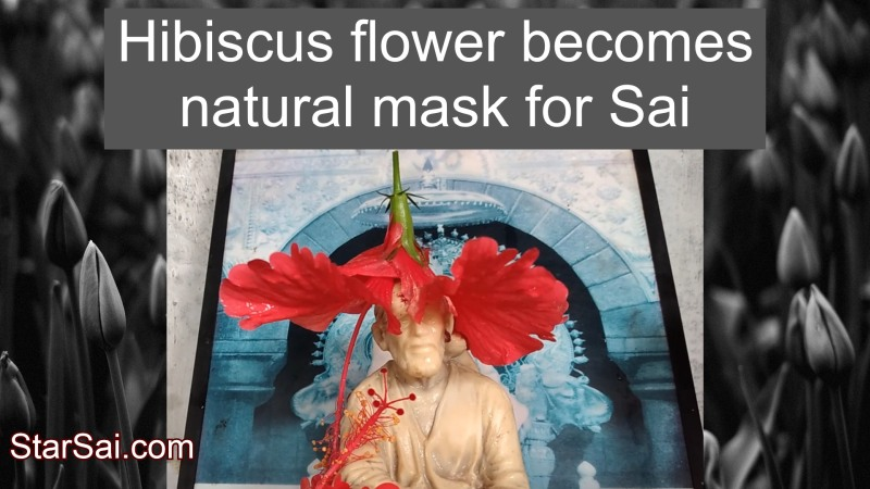 Shirdi Sai Baba with natural mask