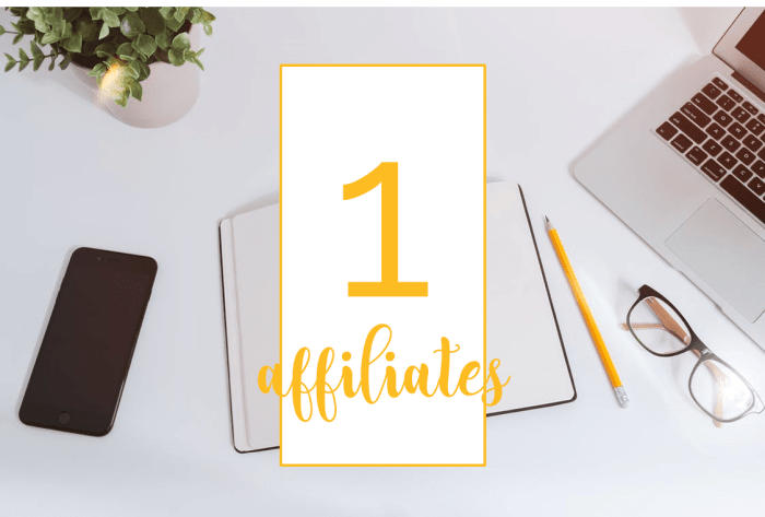 Make Your First 100 Blogging Affiliates