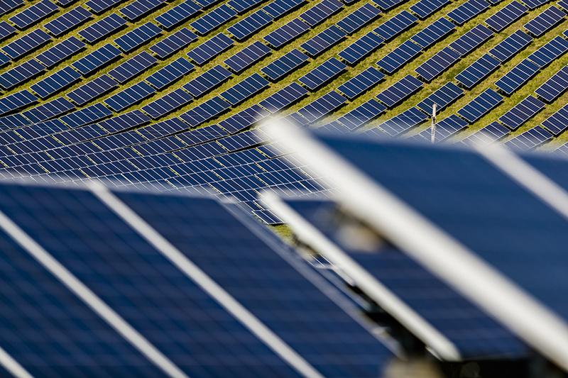 Потому что возобновляемые источники энергии начнутся после пандемии. Отчет МЭА