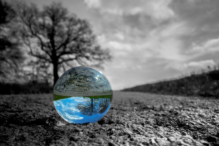 生態過渡部將做什麼?
