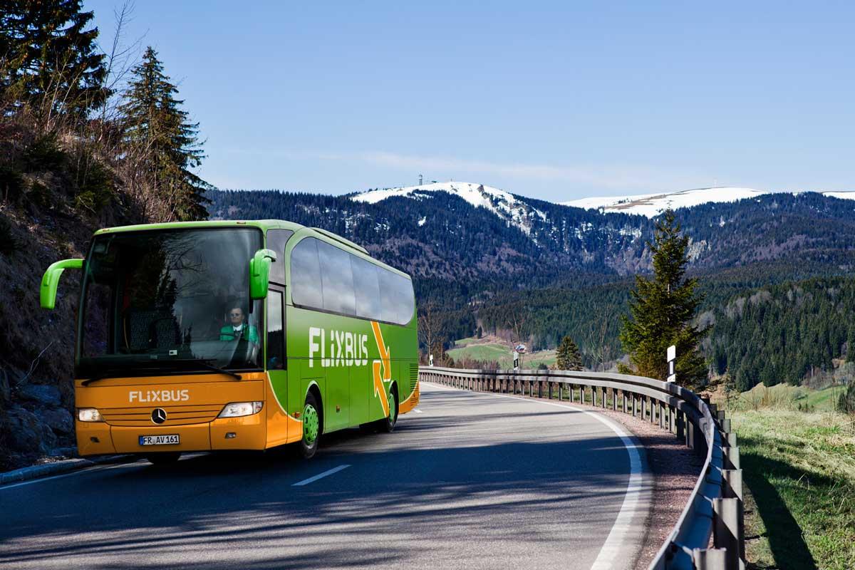 Risultati immagini per flixbus