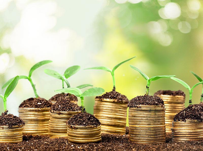 布魯塞爾監管綠色債券以增加環境債務發行