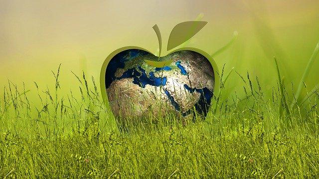 Energie, wenn die öffentlichen Ausgaben nicht grün sind
