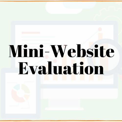 website evaluation test my website local website review