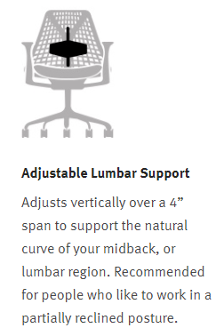 Herman Miller Sayl - Adjustable Lumbar Support