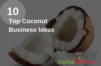 Coconut Business Ideas